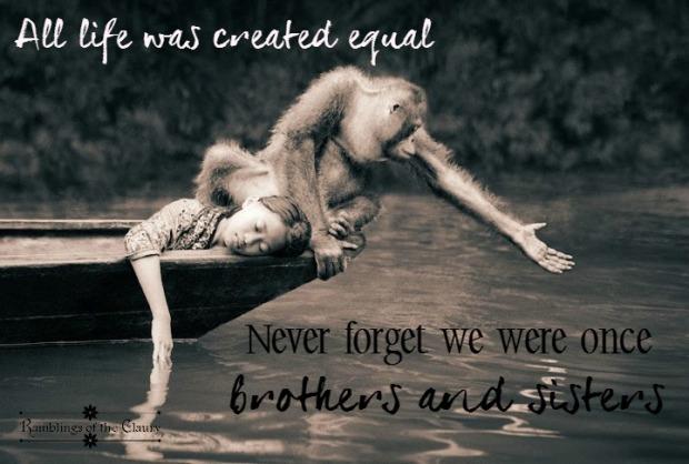 All life equal