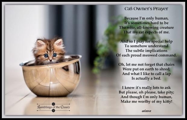 Poem 52
