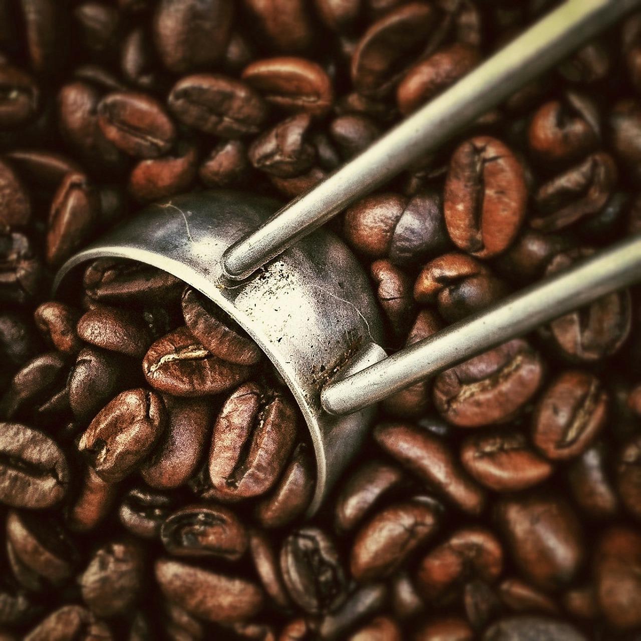 random facts coffee ramblings of the claury